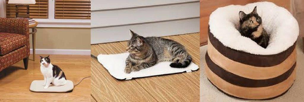 утепление для котят
