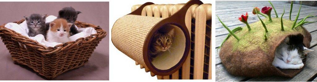 как обустроить жилище котенка