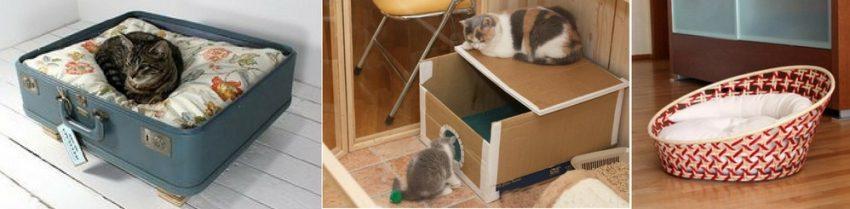 место для родов кошки