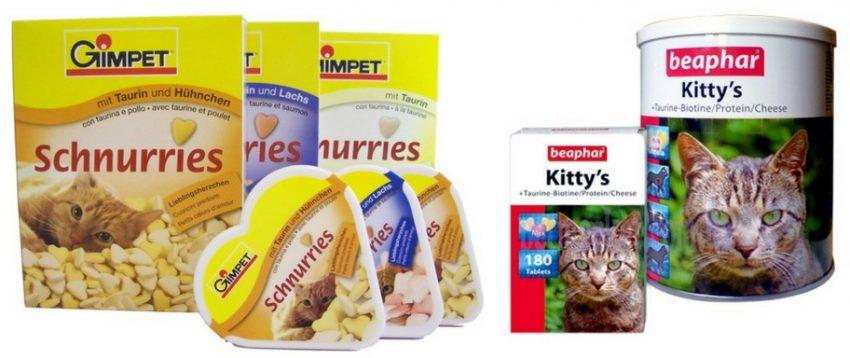 питание беременной кошки