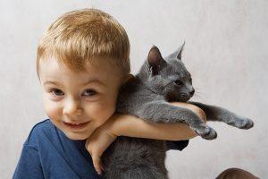 как передается лишай от кошки к людям