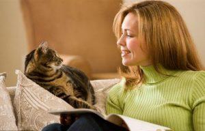 стоит ли брать второго кота в дом