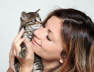почему кошки мурлычат