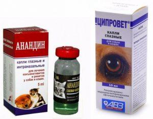 препараты при заболевании глаз