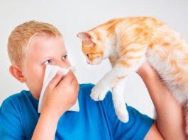 признаки аллергии на домашнего питомца