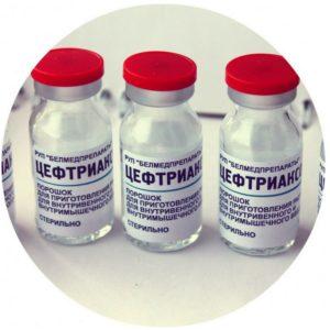 лечение отита у кошек антибиотиками