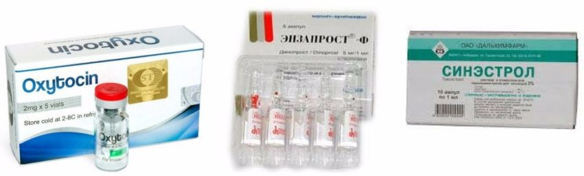 принципы лечения эндометрита