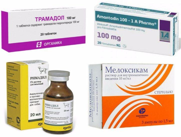 препараты для лечения перелома позвоночника