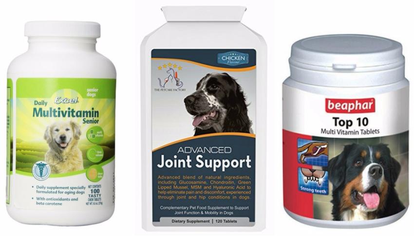 витаминные добавки для собак после родов