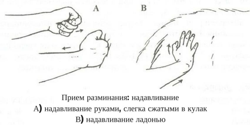техника массажа собак