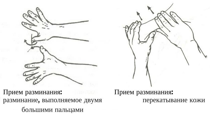 массаж собак