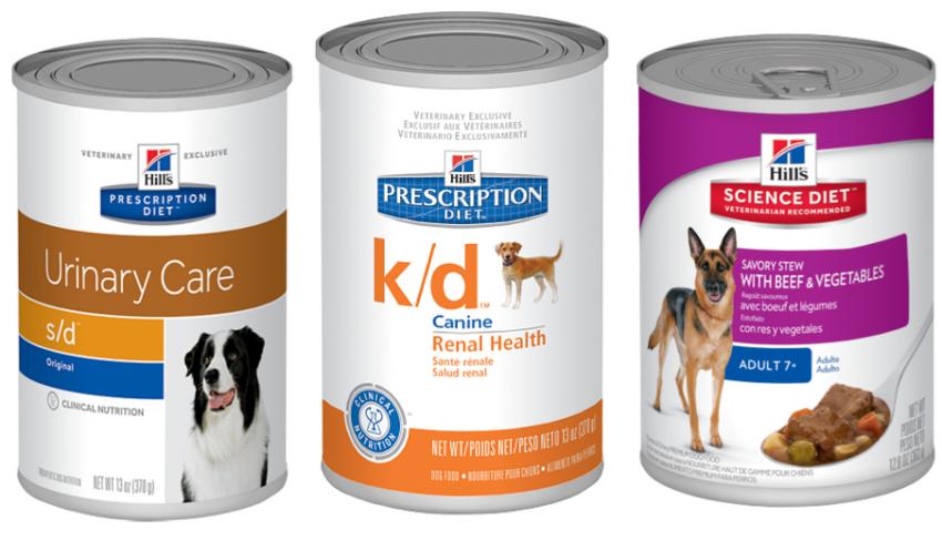 Восстановление собаки после болезни