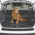 как перевезти собаку