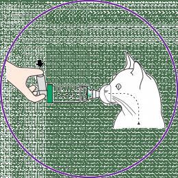 как применять спейсер для кошек