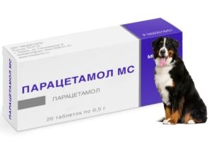 можно ли собаке давать парацетамол