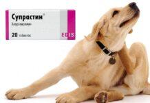 супрастин для собак