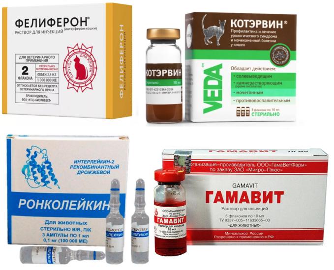 препараты для котов от коронавируса