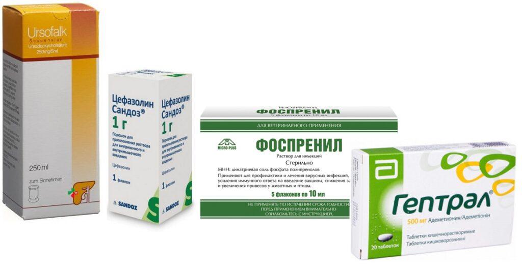 урсофальк сироп. цефазолин. угсофальк и гептрал